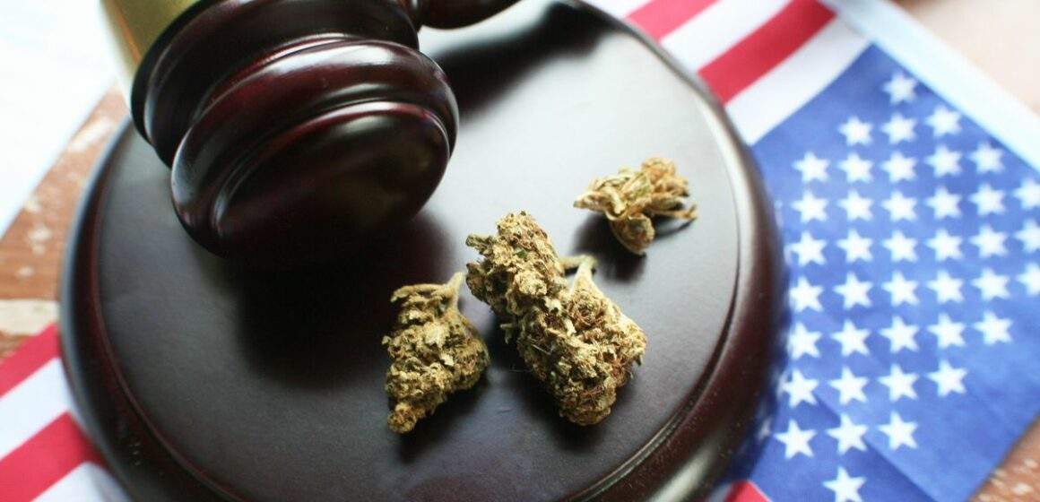 Authorities Grapple With New Hemp Law Enforcement